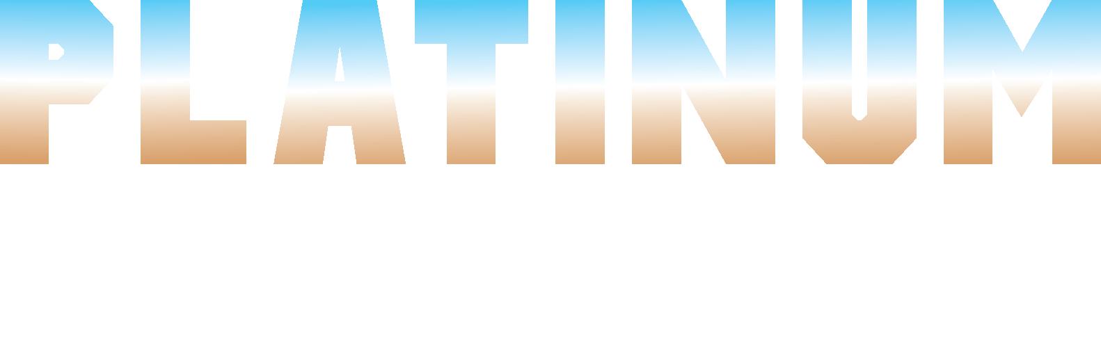 Platinum Auto Parts